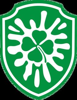Шеврон бойца пейнтбольной Команды Ирландцы